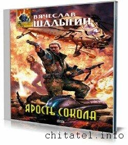 Вячеслав Шалыгин - Ярость Сокола (Аудиокнига)